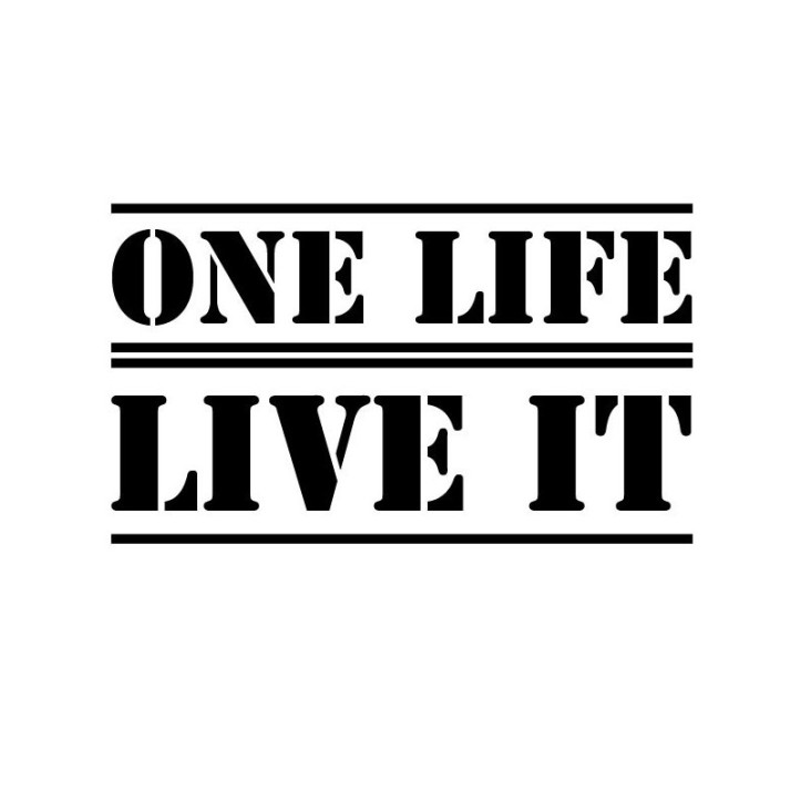 one-life-live-it-car-sticker