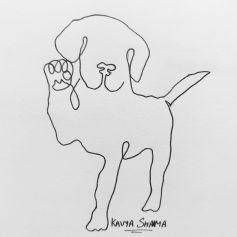 dog- Beagle